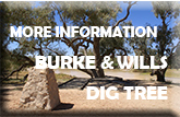 The Dig Tree and marker post monument - text reads - More Information Burke & Wills Dig Tree