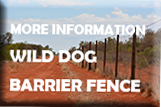 red dirt road with wire fence - text reads - More Information Wild Dog Barrier Fence